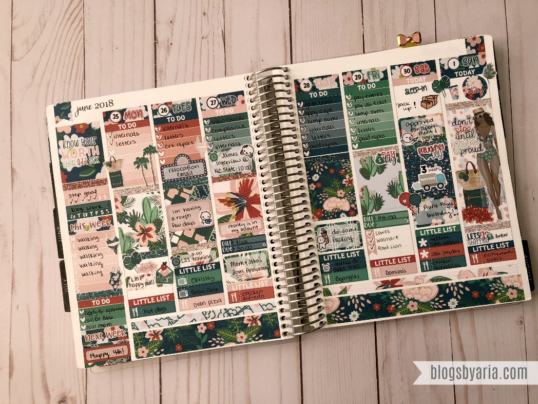 I love this Palm Springs Planner Spread featuring Little Miss Paperie of course #planwithme
