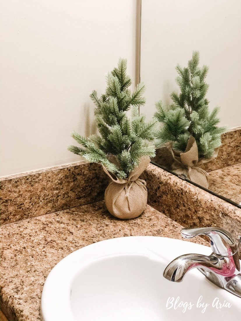 bathroom Christmas decor