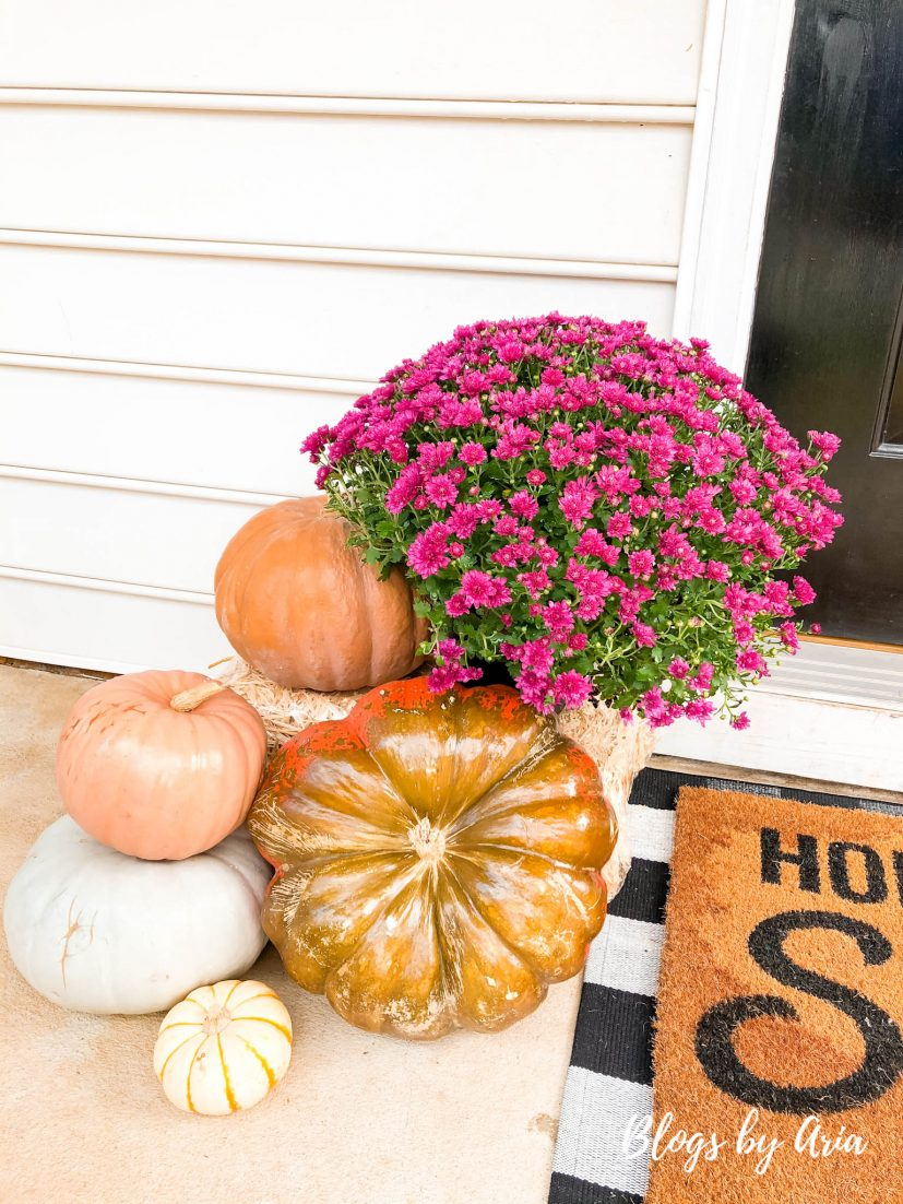 decor for small front porch